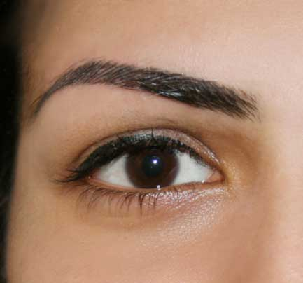 Hairstroke Brow Treatments